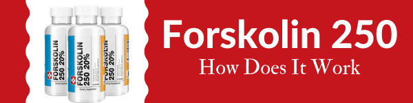 does forskolin work